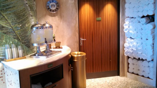 Disney Dream Rainforest Spa